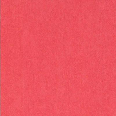 Papier peint papier sur papier 1ER PRIX Concept uni corail