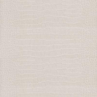 Papier Peint Vinyle Sur Intisse Lutece Crocodile Blanc Castorama