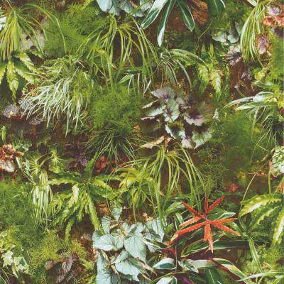 Papier peint LUTECE Mur végétal vert