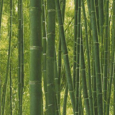 Papier peint LUTECE Fôret bambou vert