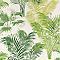 Papier peint vinyle lourd Palmier Vert