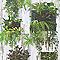 Papier peint papier sur papier LUTECE Cadre végétal