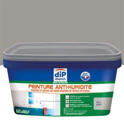 peinture anti humidit murs int rieurs dip gris galet 2 5l. Black Bedroom Furniture Sets. Home Design Ideas