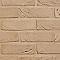 Brique Forum Prata 21,5 x 10,2 x 5 cm