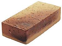 Brique pleine Léopard 5,4 x 10,5 x 22 cm