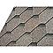 Shingle hexagonal CASTORAMA noir 1m²