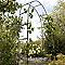 Arche double acier Tara noire