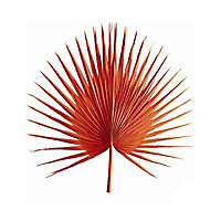 Laminage Palme orange 30 x 30 cm