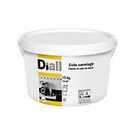 Colle en pâte mur intérieur blanc 10 kg