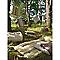 Galette de chaise carrée Bao taupe 40 x 40 cm