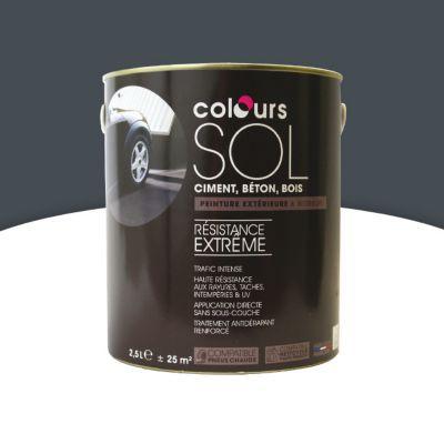 peinture sol colours premium basalte satin 2 5l castorama. Black Bedroom Furniture Sets. Home Design Ideas
