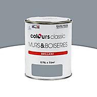 Peinture Murs et boiseries Acier Brillant 0,75L