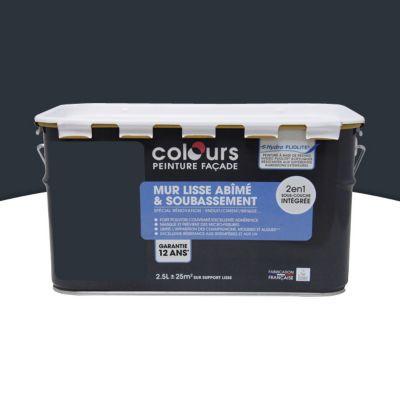peinture fa ade 2 en 1 colours anthracite 2 5l castorama. Black Bedroom Furniture Sets. Home Design Ideas