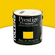 Peinture alkyde murs et boiseries Ocre jaune brillant 500 ml