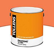 Peinture murs et boiseries Tollens Pantone 15-1263 automn glory satin 2L