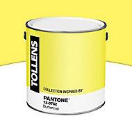 Peinture murs et boiseries Tollens Pantone 12-0752 buttercup satin 2L