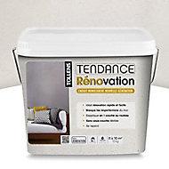 Enduit tendance de rénovation lin 10kg