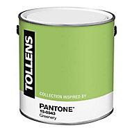 Peinture murs et boiseries Tollens Pantone 15-0343 greenery satin 2L