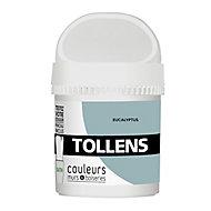 Testeur peinture murs et boiseries Tollens eucalyptus satin 50ml