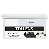 Peinture murs et boiseries Tollens instant gris satin 2,5L