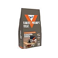 Ciment prompt VPI 5kg