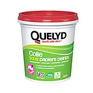Colle Papier Peint Quelyd pour Tous Papiers Peints Pâte avec indicateur coloré 1kg
