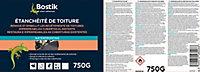 Etanchéité Bostik Etanchéité de Toiture Translucide 750g