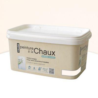 Peinture  La Chaux Tollens Blanc Mat Bross Kg  Castorama