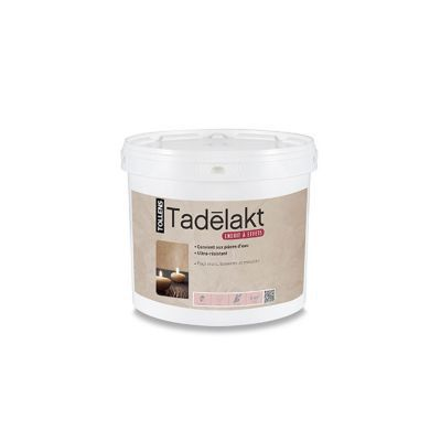 Enduit Décoratif À Teinter Rmd Decoration Tadelakt 5Kg | Castorama