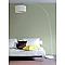 Peinture murs et boiseries Tollens Pantone 16-0213 tea satin 1L
