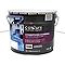 Peinture façade Colours Conditions extrêmes blanc 10L