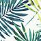 Coussin Kentia vert 40 x 40 cm