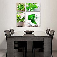 Set 4 toiles sur châssis Plantes aromatiques 57x57 cm