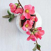 Toile imprimée Fleurs roses 30 x 30 cm