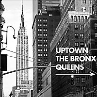 Image encadrée Bronx 38 x 38 cm