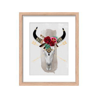 Image encadrée Crâne de Buffle 27 x 33 cm