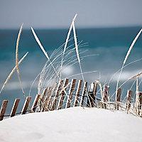 Affiche Dunes 60 x 80 cm