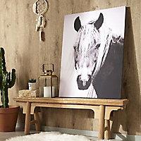 Toile imprimée Cheval noir et blanc 60 x 80 cm