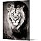 Toile Lion 65 x 90.5 cm