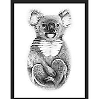 Laminage Koala 65 x 92,5 cm