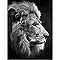 Image encadrée Lion 61 x 81 cm