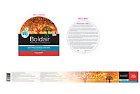 Destructeur d'odeurs Boldair bois ambré 300g