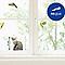 Sticker vitres Perruches