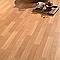 Revêtement sol PVC Saloon Manitoba coloris hêtre 4 m (vendu à la coupe)