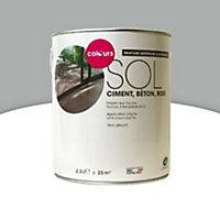 Peinture sol intérieur/extérieur Colours aluminium cendrée satin 2,5L