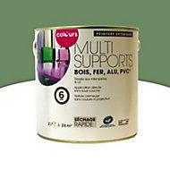Peinture multi-supports extérieur Colours olivier satin 2L