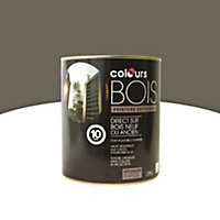 Peinture bois extérieur Colours taupe satin 0,5L