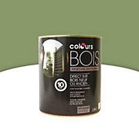 Peinture bois extérieur Colours vert Provence satin 2,5L