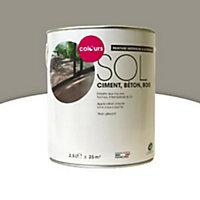 Peinture sol intérieur/extérieur Colours terre cendrée satin 2,5L