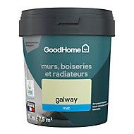 Peinture résistante murs, boiseries et métal GoodHome vert Galway mat 0,75L